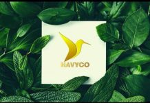 havyco